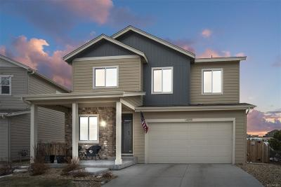 Castle Rock Single Family Home Active: 4099 Trail Stone Circle
