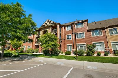 Longmont Condo/Townhouse Active: 804 Summer Hawk Drive #5106