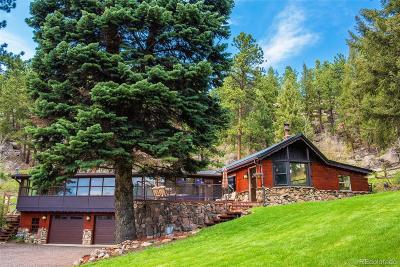 Conifer Single Family Home Active: 12935 Us Highway 285