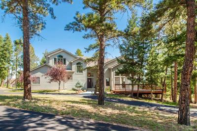 Conifer, Evergreen Single Family Home Active: 29433 Grayhawk Drive