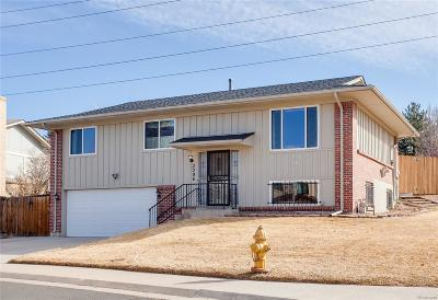 Denver Single Family Home Under Contract: 3096 South Roslyn Street