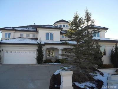Saddle Rock Single Family Home Active: 7322 South Valdai Circle