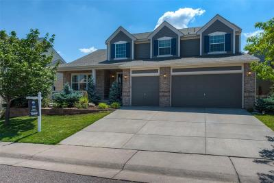 Single Family Home Sold: 6924 Winter Ridge Lane