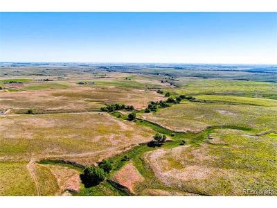 Elizabeth Residential Lots & Land Active: 9000 Sun Country Drive