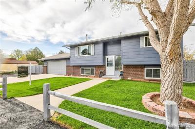 Strasburg CO Single Family Home Active: $409,995
