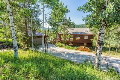 Conifer Single Family Home Under Contract: 19273 Silver Ranch Road