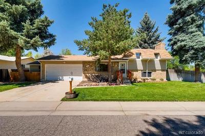 Denver Single Family Home Active: 3133 South Boston Court