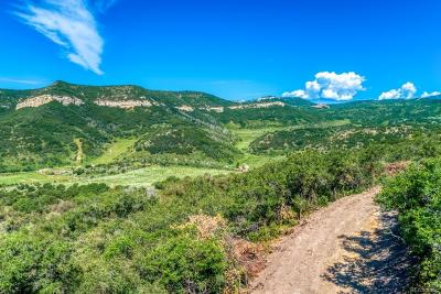 Steamboat Springs Residential Lots & Land Active: 17500 Elk Ridge Road