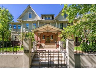 Denver Single Family Home Active: 1433 East 7th Avenue