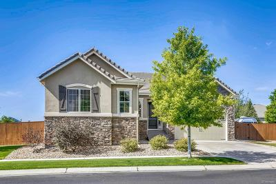 Brighton Single Family Home Under Contract: 4672 Tumbleweed Drive