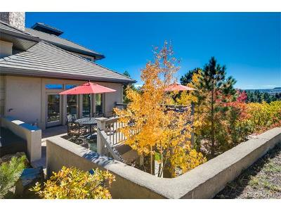 Castle Rock Single Family Home Active: 99 Coulter Place