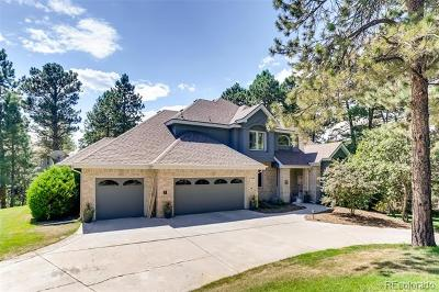 Castle Rock Single Family Home Active: 487 Hyland Drive