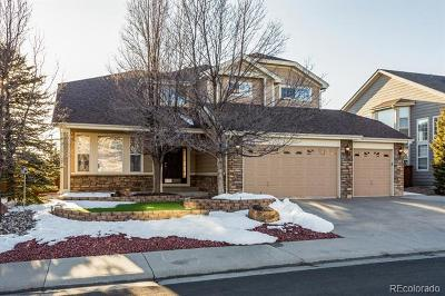 Castle Rock Single Family Home Active: 6461 Marble Lane