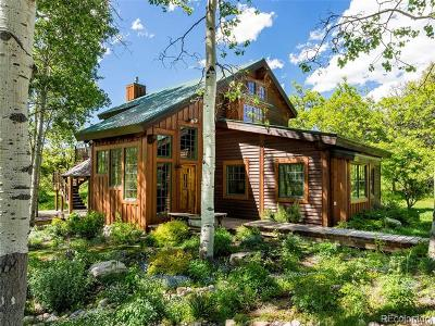 Steamboat Springs Single Family Home Active: 27315 East Whitewood Drive