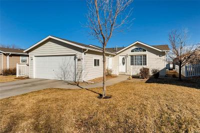 Frederick Single Family Home Under Contract: 6164 Needlegrass #293