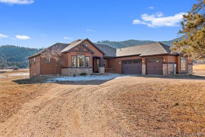 Indian Hills Single Family Home Active: 4453 Eagle Ridge Road