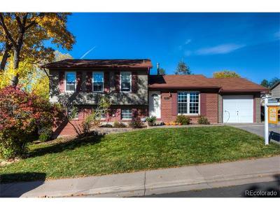 Morrison Single Family Home Active: 4373 South Yank Street