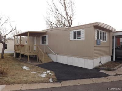 Evergreen, Arvada, Golden Single Family Home Active: 330 C Street