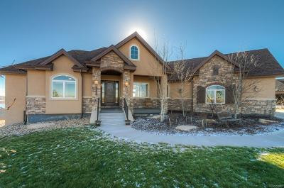 Longmont Single Family Home Under Contract: 12636 Waterside Lane