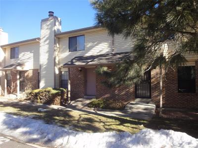 Condo/Townhouse Sold: 1181 South Sable Boulevard #D