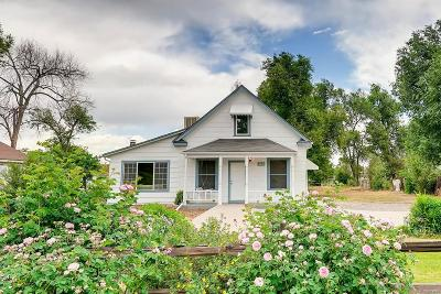 Arvada Single Family Home Active: 7151 West 52nd Avenue