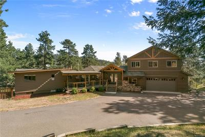 Evergreen Single Family Home Under Contract: 28609 Pine Drive