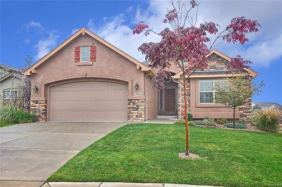 Colorado Springs Single Family Home Active: 3001 Sovereign View