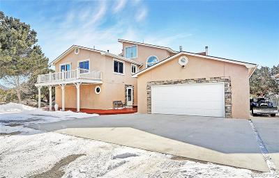 Buena Vista Single Family Home Under Contract: 31390 County Road 384b