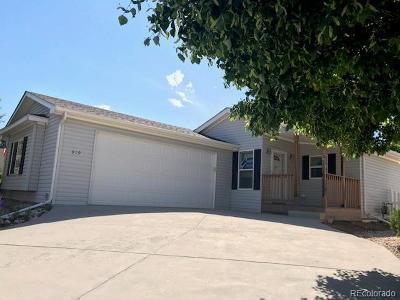 Fort Collins Single Family Home Active: 919 Vitala Drive