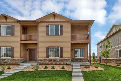 Longmont Condo/Townhouse Under Contract: 1216 Bistre Street