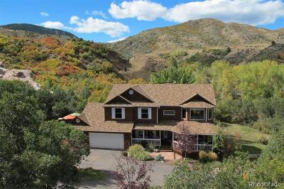 Littleton Single Family Home Active: 13196 West Mustang Way