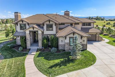Castle Rock Single Family Home Active: 546 Tremolite Place