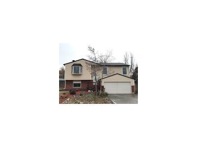 Castle Rock Single Family Home Under Contract: 806 Park View Place