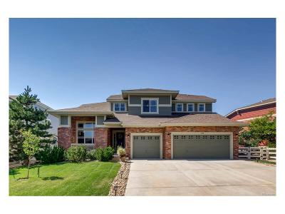 Crystal Valley, Crystal Valley Ranch Single Family Home Under Contract: 3918 Eagle Tail Lane