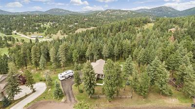 Morrison Single Family Home Under Contract: 20957 Horse Bit Way