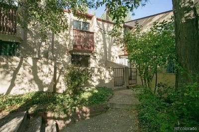 Denver Income Active: 1060 South Parker Road