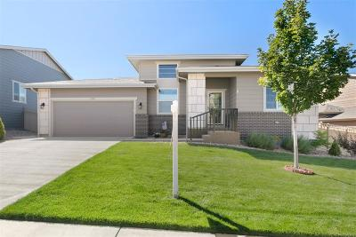 Castle Rock Single Family Home Active: 4190 Manorbrier Circle