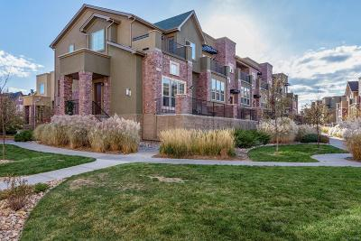 Highlands Ranch Condo/Townhouse Under Contract: 851 Elmhurst Drive #F