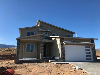 Colorado Springs Single Family Home Active: 868 Uintah Bluffs Place