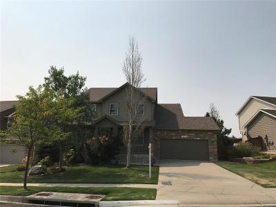 Parker Single Family Home Active: 12191 South Red Sky Drive