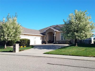 Longmont Single Family Home Under Contract: 1169 Wyndemere Circle