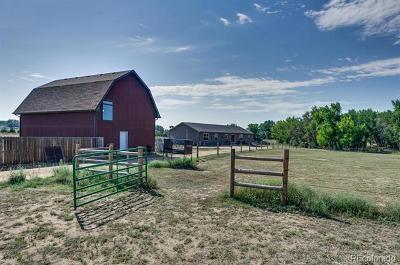Longmont Single Family Home Active: 6073 County Road 20