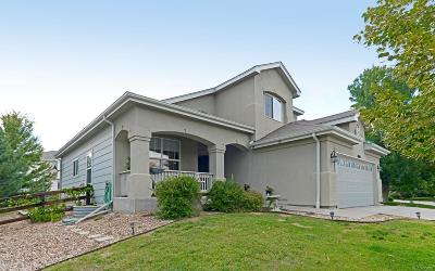 Littleton Single Family Home Active: 7665 Eagle Perch Court
