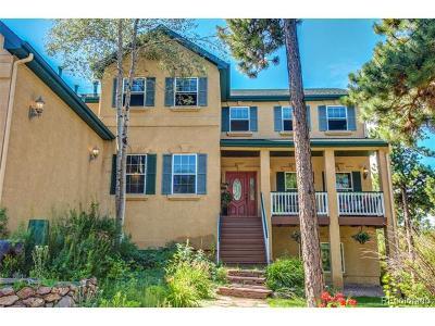 Monument Single Family Home Active: 717 Lavelett Lane