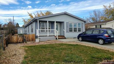 Denver Single Family Home Active: 2935 West 90th Avenue