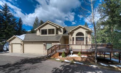 Morrison Single Family Home Under Contract: 8159 Iowa Gulch Road