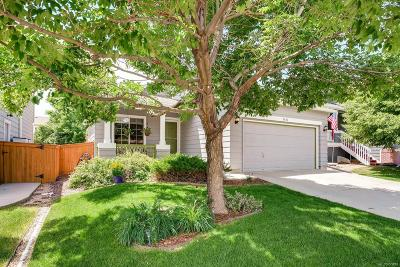 Highlands Ranch Single Family Home Under Contract: 9804 Sydney Lane