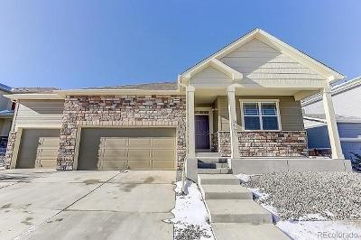 Castle Rock Single Family Home Active: 5907 Point Rider Circle