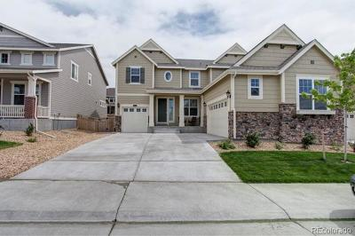 Castle Rock Single Family Home Active: 2404 Leafdale Circle
