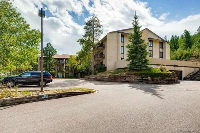 Evergreen Condo/Townhouse Under Contract: 31270 John Wallace Road #102
